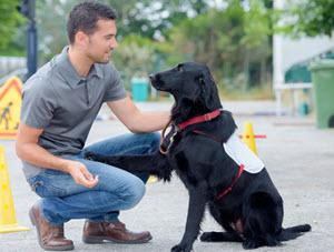Animal Trainer