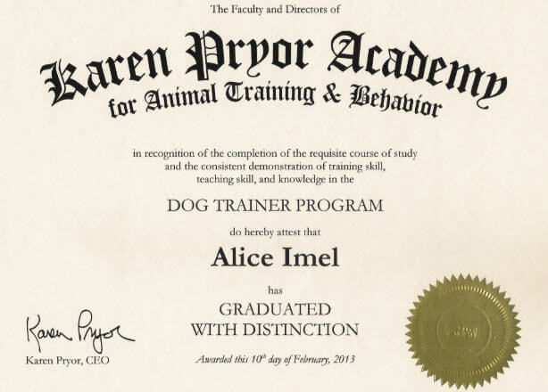 Dog training certification example