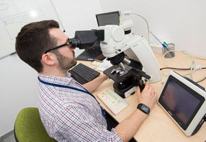 Veterinary Pathologist
