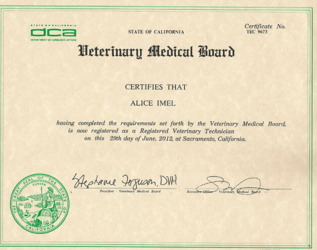 veterinary technician certification example