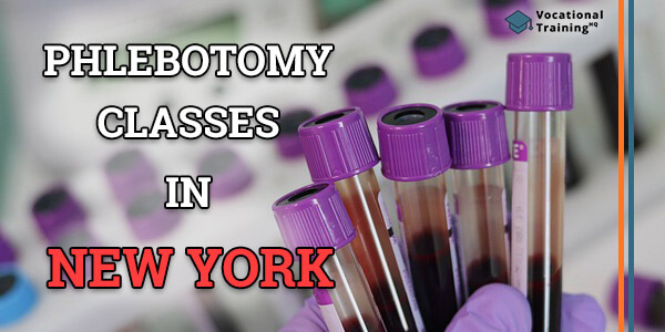 Phlebotomy Classes in New York