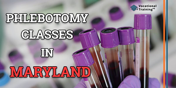 Phlebotomy Classes in Maryland