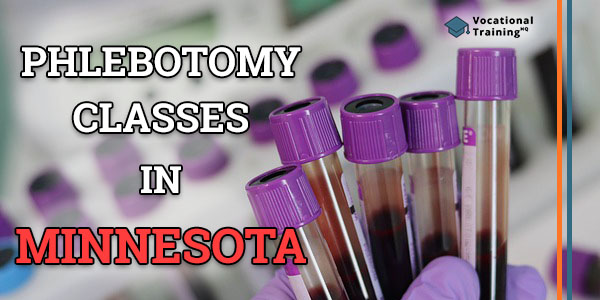 Phlebotomy Classes in Minnesota
