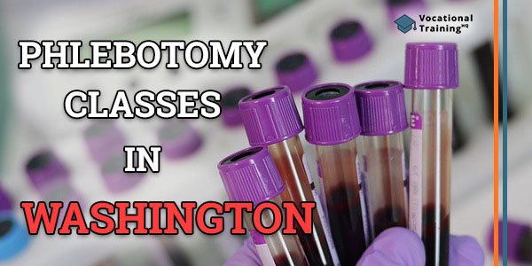 Phlebotomy Classes in Washington