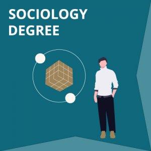 Sociology Degree