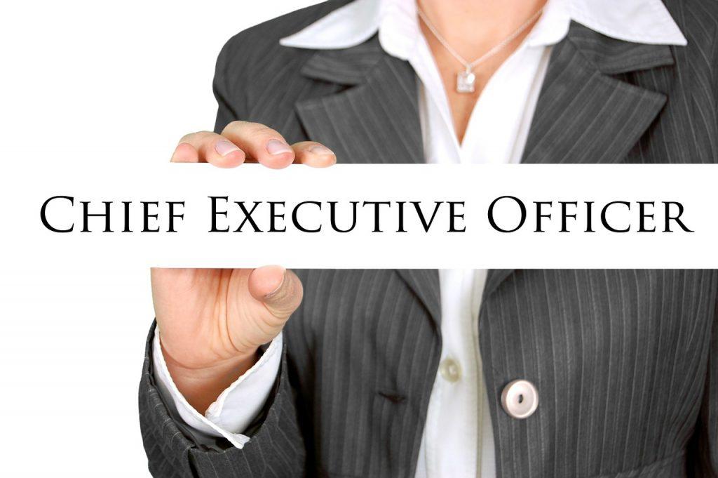 Career Options, Bachelor's Degree, CEO