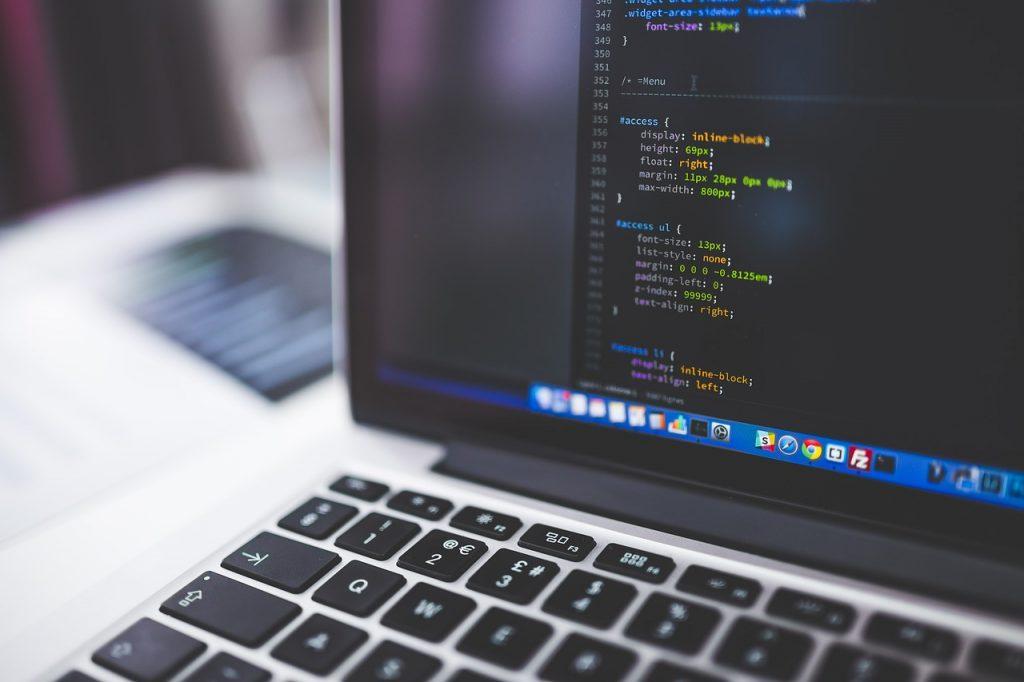 Career Options, Bachelor's Degree, Software Developer