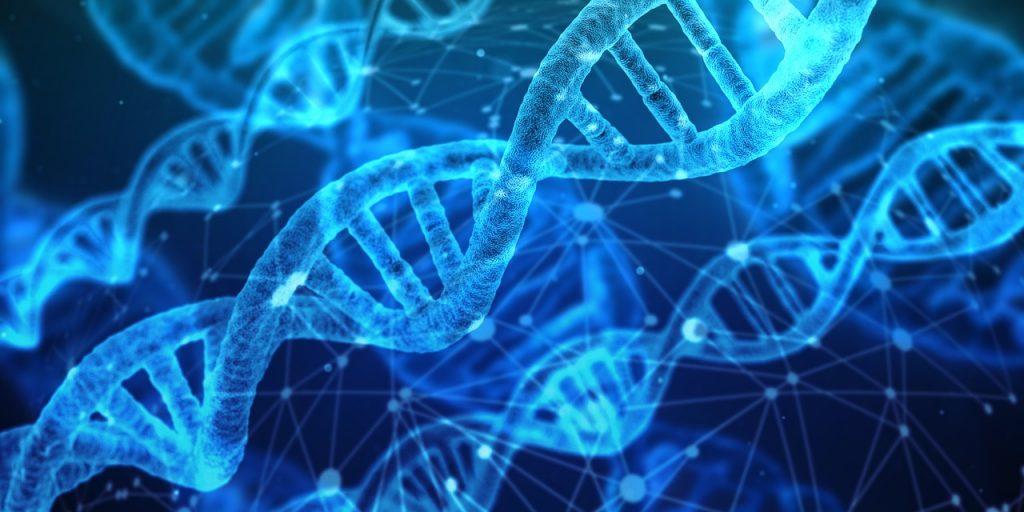 Career Options, Bachelor's Degree, Genetics