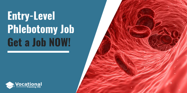 Entry-Level Phlebotomy Job