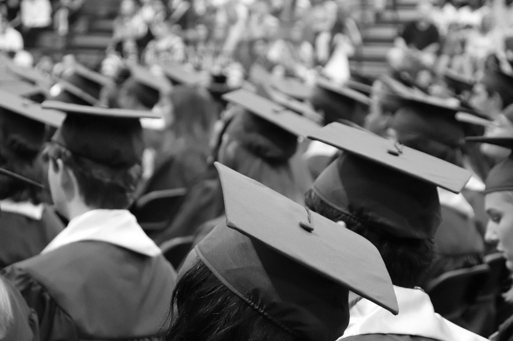Education, Options, Trade School, College, Graduates