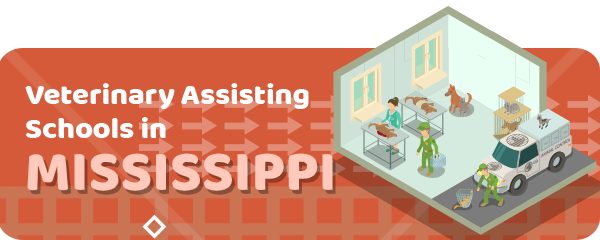 How to Become a Veterinary Assistant in Mississippi