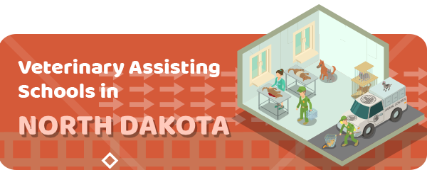 How to Become a Veterinary Assistant in North Dakota