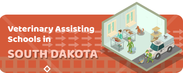 How to Become a Veterinary Assistant in South Dakota